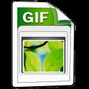 Imagen GIF icon